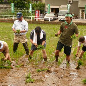 「都市における農業を考える若手議員の会」において田植え体験。